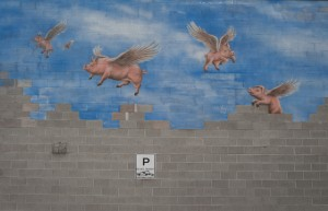 Eric Rose Photography - Fly Pig wall mural