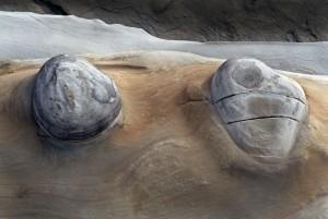 Eric Rose Photography - Rock formation Coos Bay Oregon